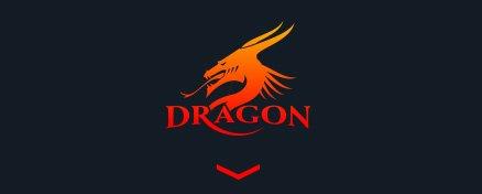Logo foteli gamingowych Dragon